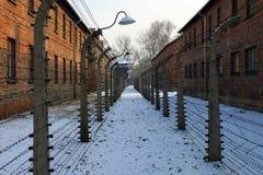 Auschwitzconcentratiekamp Royalty-vrije Stock Foto