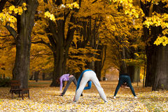 Ausdehnen von Übungen im Park Stockfotos