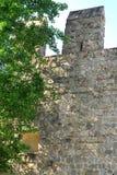 Ausdehnung von alten Wänden mit Baum in Monselice-Stadt in der Provinz von Padua im Venetien (Italien) Stockfoto