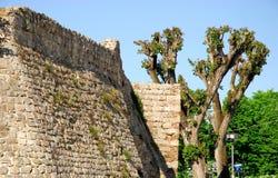 Ausdehnung von alten Wänden mit Pappel in Monselice-Stadt in der Provinz von Padua im Venetien (Italien) Stockfotografie