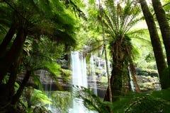 ausen faller fältmt-nationalparken russel tasmania Royaltyfri Fotografi