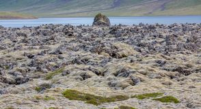 Ausführliche Ansicht von Lavafeldskylinen in Island Lizenzfreies Stockfoto