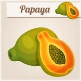Ausführliche Ikone papaya Lizenzfreies Stockbild