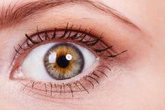 Ausführliche Nahaufnahme des bunten Auges der Frau stockbilder