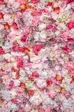 Ausführliche vektorzeichnung Beschaffenheit der Blumen Stockfotos