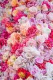 Ausführliche vektorzeichnung Beschaffenheit der Blumen Stockbild