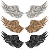 Ausführliche Vogel-Flügel Stockfotos