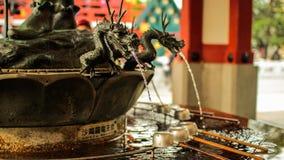 Ausführlicher Reinigungsbrunnen des Drachen Lizenzfreie Stockbilder