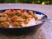 Ausführliches Bild des heißen Lammcurrys des typischen indischen Lebensmittels mit Reis und gehacktem Paprika diente auf der tief Lizenzfreie Stockfotografie