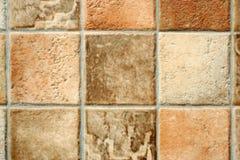Ausführliches Bild eines Linoleums Lizenzfreie Stockfotos