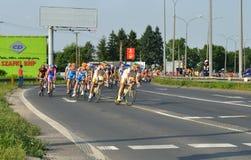 Ausflug de Pologne Stockfotografie