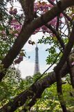 Ausflug Eiffel, Paris stockbilder