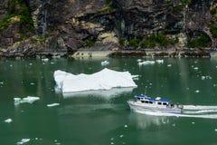 Ausflug zu Tracy Arm Glacier Stockfotos