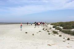 Ausfluggäste auf der Sandbank Lizenzfreies Stockbild