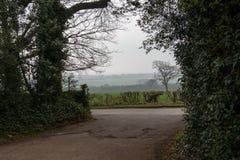 Ausgangsstraße vom ländlichen Eigentum mit Blick zur nebeligen Wiese Großbritannien Lizenzfreies Stockfoto