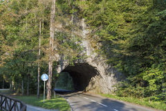 Ausgebluteter Seeautotunnel, Slowenien lizenzfreies stockbild