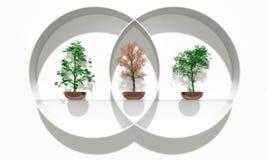 Ausgeglichene Bäume Stockfotografie