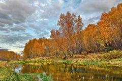 Ausgereifter Herbst auf Fluss Stockbild