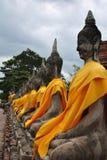 Ausgerichtete Buddha-Statuen in Ayutthaya, Thailand Stockfoto