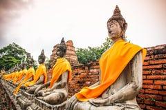 Ausgerichtete Buddha-Statuen bei Wat Yai Chai Mongkhon Ayutthaya lizenzfreie stockbilder