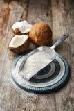 Ausgetrocknete Kokosnuss in der Schaufel lizenzfreie stockfotografie