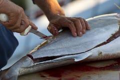 Ausgeweidete Fische Stockfotos