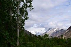 Ausgezeichnete Ansicht von weißen schneebedeckten Alpenbergen und von grünem Baumhügel unter dem blauen Himmel mit Wolken lizenzfreies stockfoto