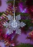 Ausgezeichnete Schneeflocke stockfoto