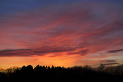 Ausgezeichneter Abend Himmel Stockfotografie
