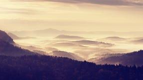 Ausgezeichneter schwerer Nebel in der Landschaft Sahniger Nebel des Herbstes in der Landschaft Stockfoto