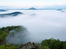 Ausgezeichneter schwerer Nebel in der Landschaft Sahniger Nebel des Herbstes in der Landschaft Hügel erhöht vom Nebel, Lizenzfreie Stockfotografie