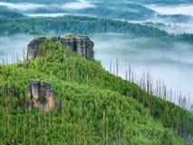 Ausgezeichneter schwerer Nebel in der Landschaft Sahniger Nebel des Herbstes in der Landschaft Hügel erhöht vom Nebel, Lizenzfreies Stockfoto