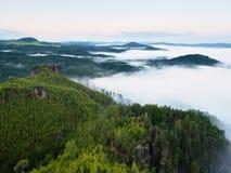 Ausgezeichneter schwerer Nebel in der Landschaft Sahniger Nebel des Herbstes in der Landschaft Hügel erhöht vom Nebel, Stockfoto
