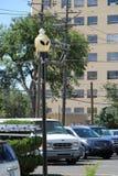 Ausländische Straßenbeleuchtung in Roswell Lizenzfreie Stockfotografie