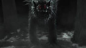 Ausländischer Wolf taucht von einem dunklen Wald auf und öffnet seinen Mund stock video footage
