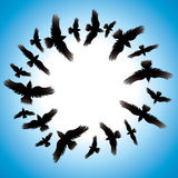 Auslegung mit Vögeln. Stockfotografie