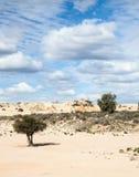 Ausländischer moonscape See Mungo Australia Lizenzfreie Stockfotos