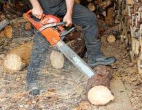 Ausschnittbrennholz Stockfotos