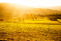Aussie sunset Royalty Free Stock Photography