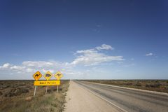 Aussie Warning Signs. A warning sign on the Eyre Highway on the Nullarbor Plain in South Australia stock photos