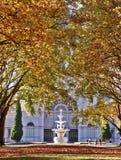 Ausstellung-Herbst Stockfoto