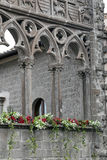Ausstellung San Pellegrino in Fiore in Viterbo - Italien Lizenzfreies Stockfoto