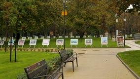 Ausstellung von Fotografien im Stadtpark, Freilichtmuseum, Kunst als Hobby, Reihenfolge stock video footage