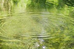 Ausstrahlen der Kräuselungen auf einem grünen Teich Stockfotografie
