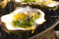 Auster auf Grill (BBQ) Stockbild
