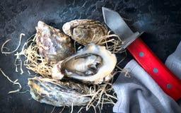 auster Frische Austernnahaufnahme mit Messer auf dunklem Hintergrund Austernabendessen im Restaurant stockfotos