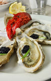 Auster mit Kaviar und Panzerkrebsen Stockbilder