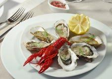 Auster mit Kaviar und Panzerkrebsen Lizenzfreie Stockfotografie