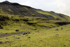 Austere Landscape in Iceland. Iceland`s landscape presents a stark contrast between green ground cover and black volcanic rock Royalty Free Stock Image