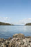 Austern auf Felsen nähern sich Batman-Brücke, Tamar-Fluss stockfotografie